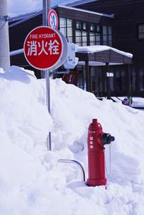 消火栓の写真素材 [FYI01780440]