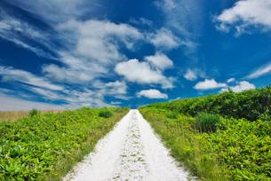 宗谷丘陵と白い道の写真素材 [FYI01780453]