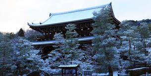 2月 雪化粧した知恩院三門の写真素材 [FYI01780472]