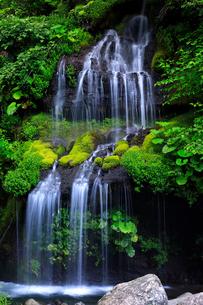 9月 夏の吐竜の滝の写真素材 [FYI01780607]