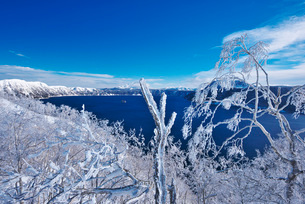 摩周湖の樹氷の写真素材 [FYI01780656]