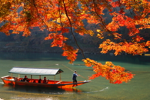 11月秋 紅葉の保津川遊覧船の写真素材 [FYI01780757]