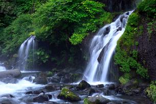 7月 夏の吐竜の滝の写真素材 [FYI01780765]