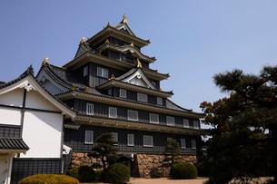 4月 春の岡山城の写真素材 [FYI01780771]