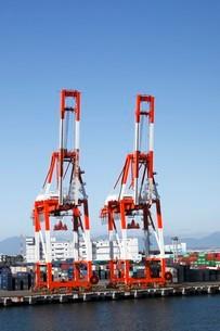 10月 名古屋港のガントリークレーンとコンテナの写真素材 [FYI01780786]