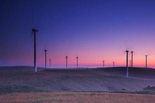 宗谷丘陵の風力発電の朝と霧の写真素材 [FYI01780794]