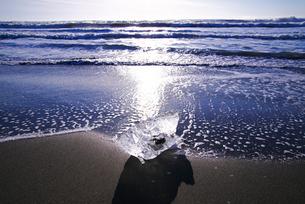 十勝川河口の氷と朝の海の写真素材 [FYI01780889]