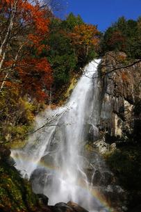 10月 紅葉の大倉滝 せせらぎ街道最大の滝の写真素材 [FYI01780938]