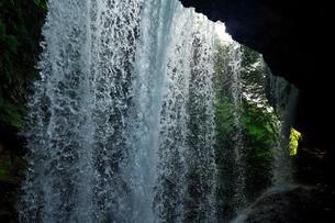 7月  雷滝 マイナスイオンの裏見の滝の写真素材 [FYI01780943]