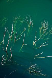 徳山湖の写真素材 [FYI01781090]