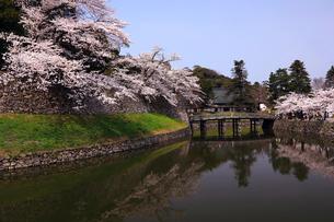 4月 桜咲く彦根城のお堀の写真素材 [FYI01781095]