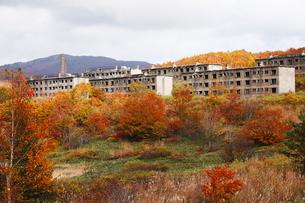 10月 松尾鉱山廃墟 紅葉の八幡平アスピーテラインの写真素材 [FYI01781128]