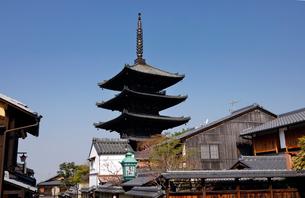 3月 枝垂桜の八坂の塔-京都東山の風景-の写真素材 [FYI01781140]