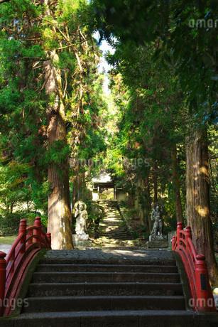 両子寺の仁王像の写真素材 [FYI01781169]