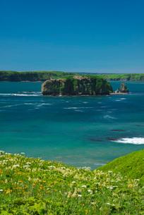 アゼチ岬と小島とエゾカンゾウなどの花の写真素材 [FYI01781313]