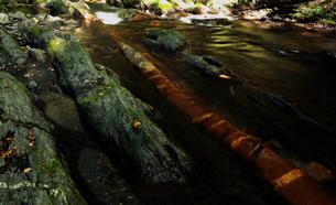9月 蛇石(じゃいし)の流れの写真素材 [FYI01781330]