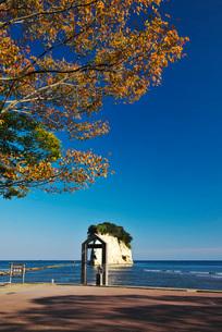 見附島(軍艦島)の秋の写真素材 [FYI01781564]