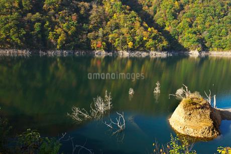 徳山湖の秋の写真素材 [FYI01781579]