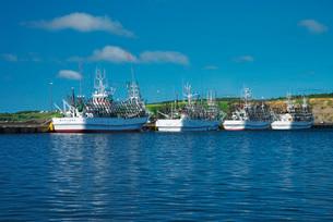 花咲漁港とサンマ漁船の写真素材 [FYI01781705]