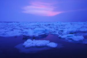 野付半島の朝の流氷の写真素材 [FYI01781783]