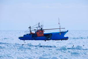 流氷に閉じ込められたスケソウダラ漁船の写真素材 [FYI01781793]