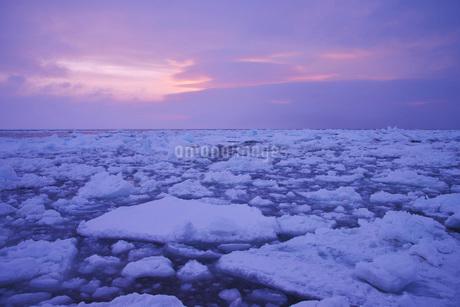 野付半島の朝の流氷の写真素材 [FYI01781842]