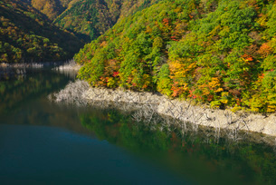 徳山湖の秋の写真素材 [FYI01781844]