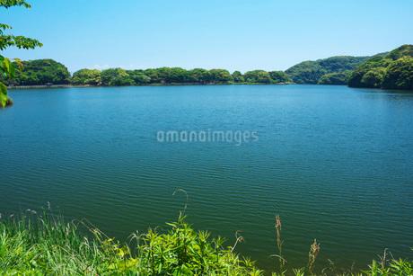 川原大池の写真素材 [FYI01781846]