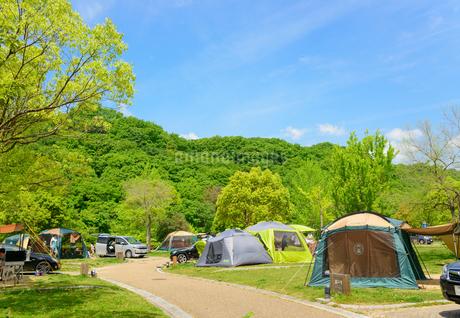 オート キャンプ場の写真素材 [FYI01782183]