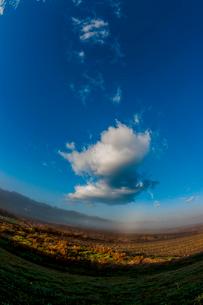 霧 川霧 青空 雲の写真素材 [FYI01782333]