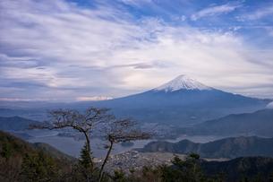 新道峠より望む富士山と河口湖の写真素材 [FYI01782393]