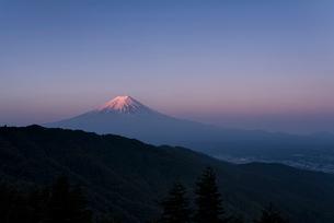 三つ峠中腹より望む朝焼けの紅富士の写真素材 [FYI01782419]