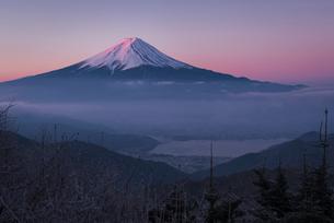 御坂山より望む河口湖越しの紅富士の写真素材 [FYI01782435]
