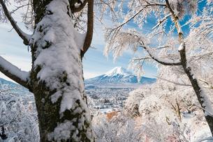 富士吉田より望む雪景色と富士山の写真素材 [FYI01782470]