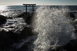 大洗磯前神社の神磯の鳥居の写真素材 [FYI01782471]
