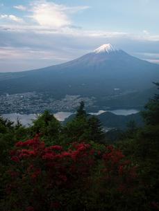 新道峠より望む富士山とツツジの写真素材 [FYI01782511]