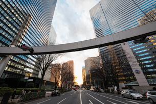 新宿警察署東交差点より望む夕方の西新宿の写真素材 [FYI01782609]