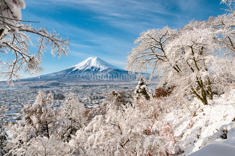 富士吉田市内の高台より望む雪景色と富士山の写真素材 [FYI01782614]