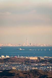 鹿野山より望む東京湾越しの東京のスカイラインと東京スカイツリーの写真素材 [FYI01782631]