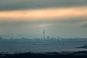 鹿野山より望む東京湾越しの東京のスカイラインと東京スカイツリーの写真素材 [FYI01782645]
