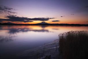 涛沸湖の朝と斜里岳の写真素材 [FYI01782784]