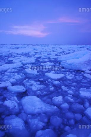 野付半島の朝の流氷の写真素材 [FYI01782894]