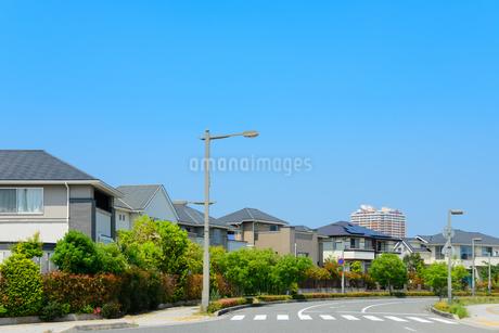 関西の住宅の写真素材 [FYI01782995]
