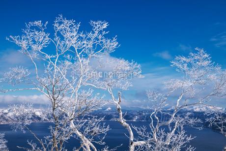 摩周湖と樹氷の写真素材 [FYI01783068]