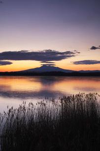 涛沸湖の朝と斜里岳の写真素材 [FYI01783179]