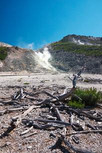 硫黄山の写真素材 [FYI01783350]