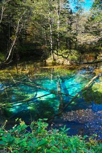 神の子池の秋の写真素材 [FYI01783673]