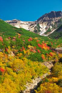 十勝岳温泉の紅葉とカミホロカメットク山の写真素材 [FYI01783694]