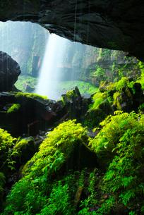 阿弥陀ヶ滝の写真素材 [FYI01783747]