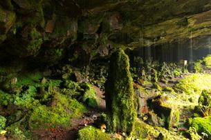 阿弥陀ヶ滝裏の洞窟の石仏群の写真素材 [FYI01783896]